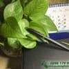 BKT 28 but ky kim loai nap cao cap khac logo cong ty lam qua tang khach hang quang cao thuong hieu doanh nghiep (9)